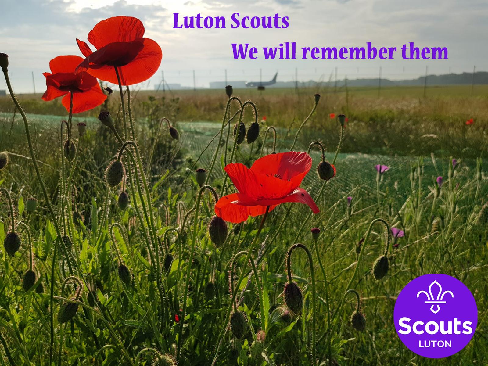 Luton Scouts Remembrance Day Parades 2019