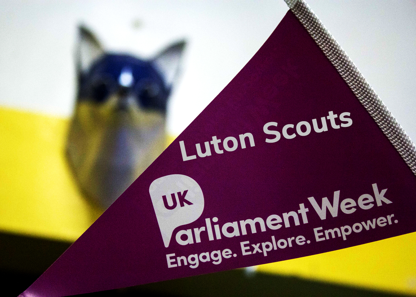 Luton Scouts Parliament Week November 2018