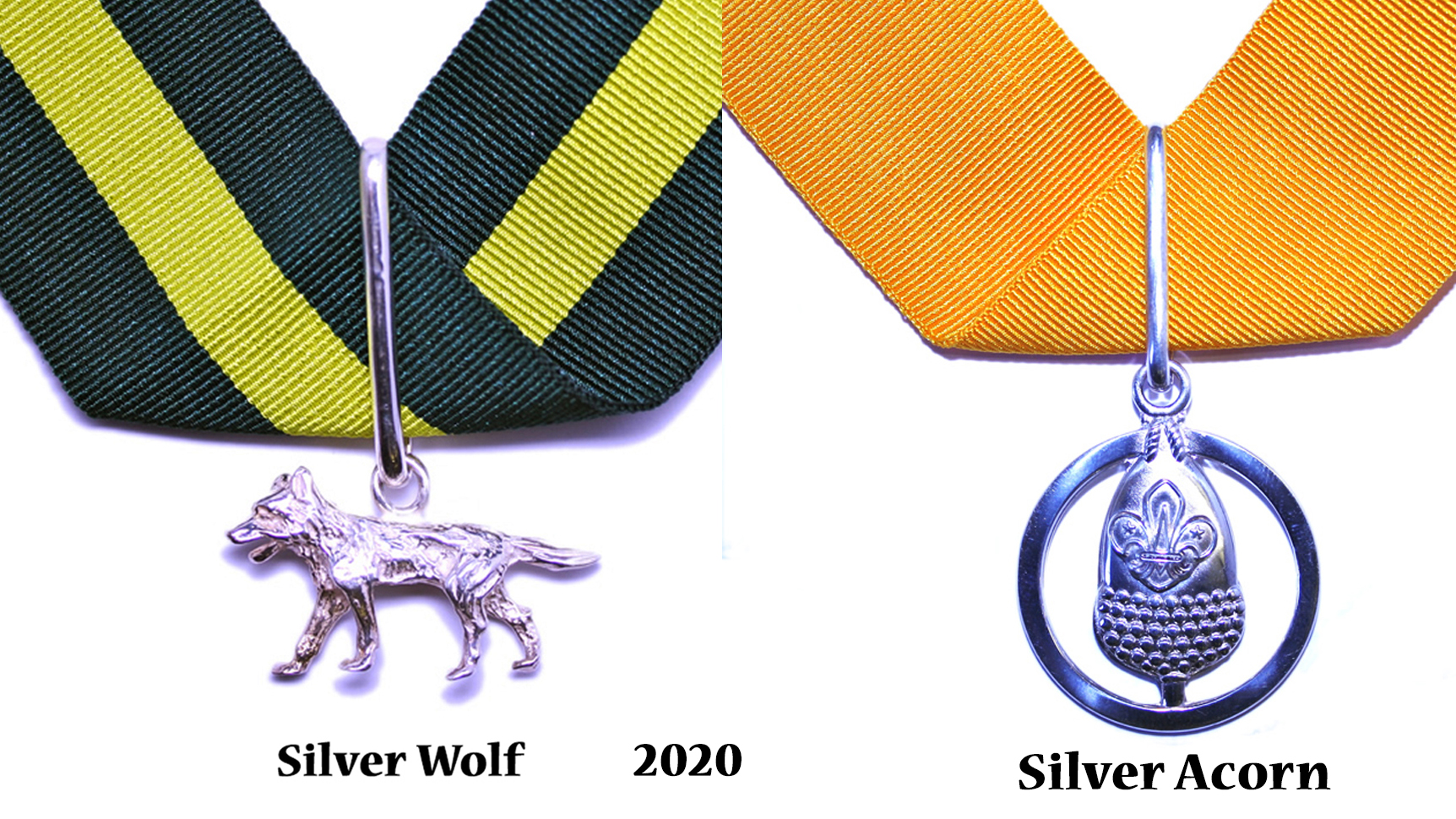 2020 Awards 2020 for Luton Scouters